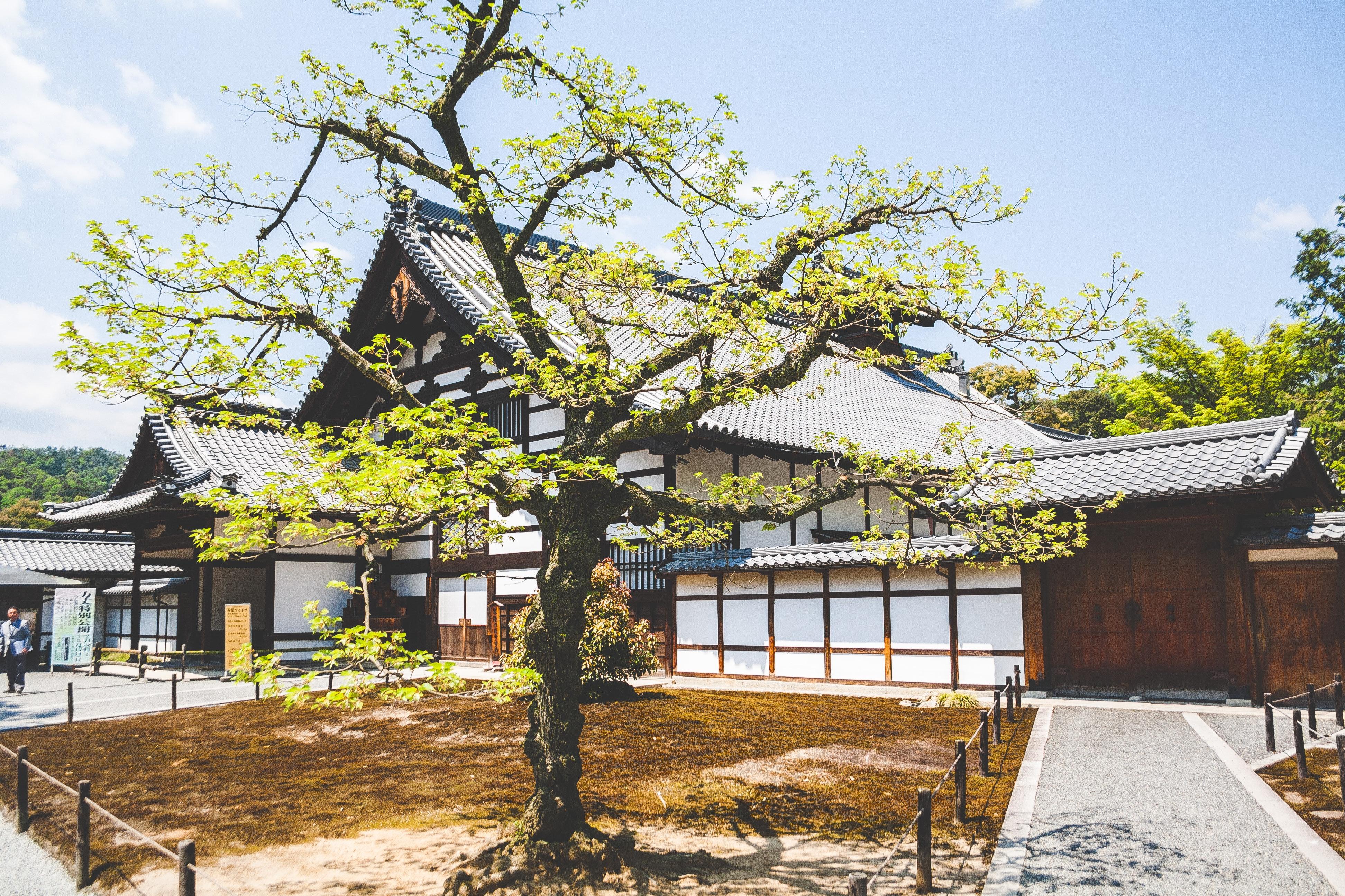 俵千枝子(あめの俵屋)の受け継ぐ伝統やその発祥について 「じろあめ」が半沢直樹でも放映されていた?